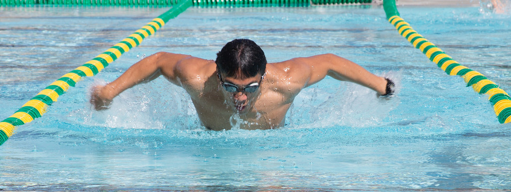 A swimmer swimming butterfly in a pool