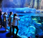 Photo of people in front of a big aquarium