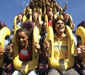 Photo of people on a roller coaster