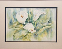 Still-life of white flowers
