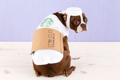 DIY Dog Costumes That Everyone Will Love This Halloween