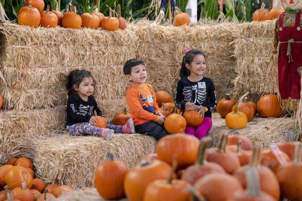 Fallin' Into A New Season With Fall At The Farm