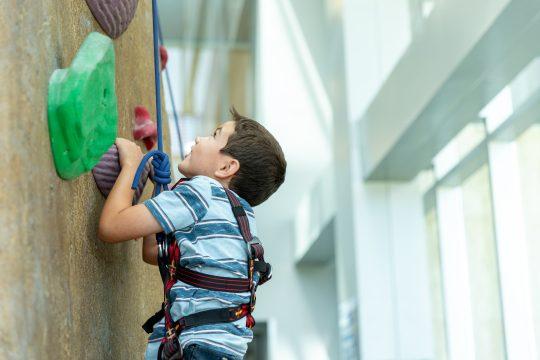 Child climbing a rock wall