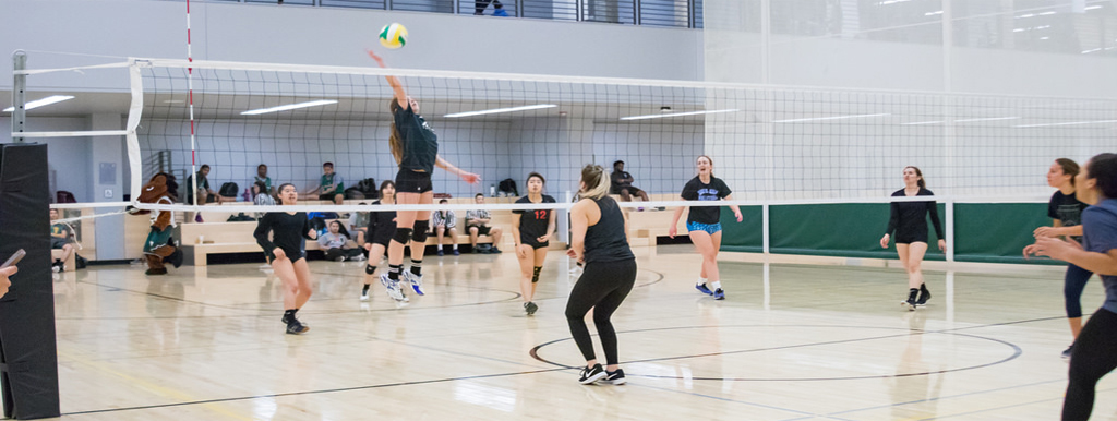 Students playing Intramurals volleyball