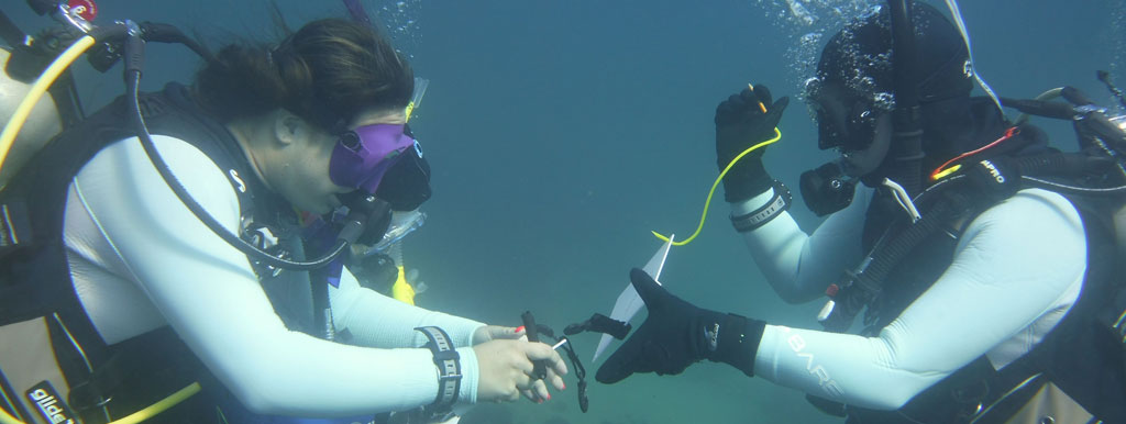 Two scuba divers looking at an item underwater.