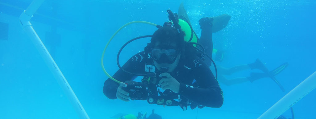 One scuba diving student underwater.