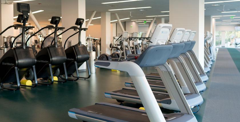 Row of cardio exercise machines