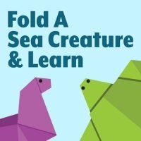 Fold a Sea Creature & Learn marketing