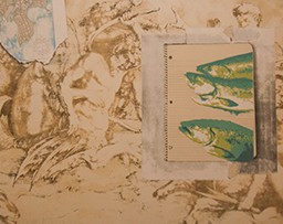 Notebook of fish illustrations on top of an illustration of mythical characters